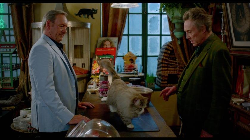 nine-lives-film-clip-the-cat-picks-you-15663-large